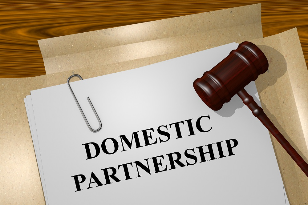 domestic partnership laws